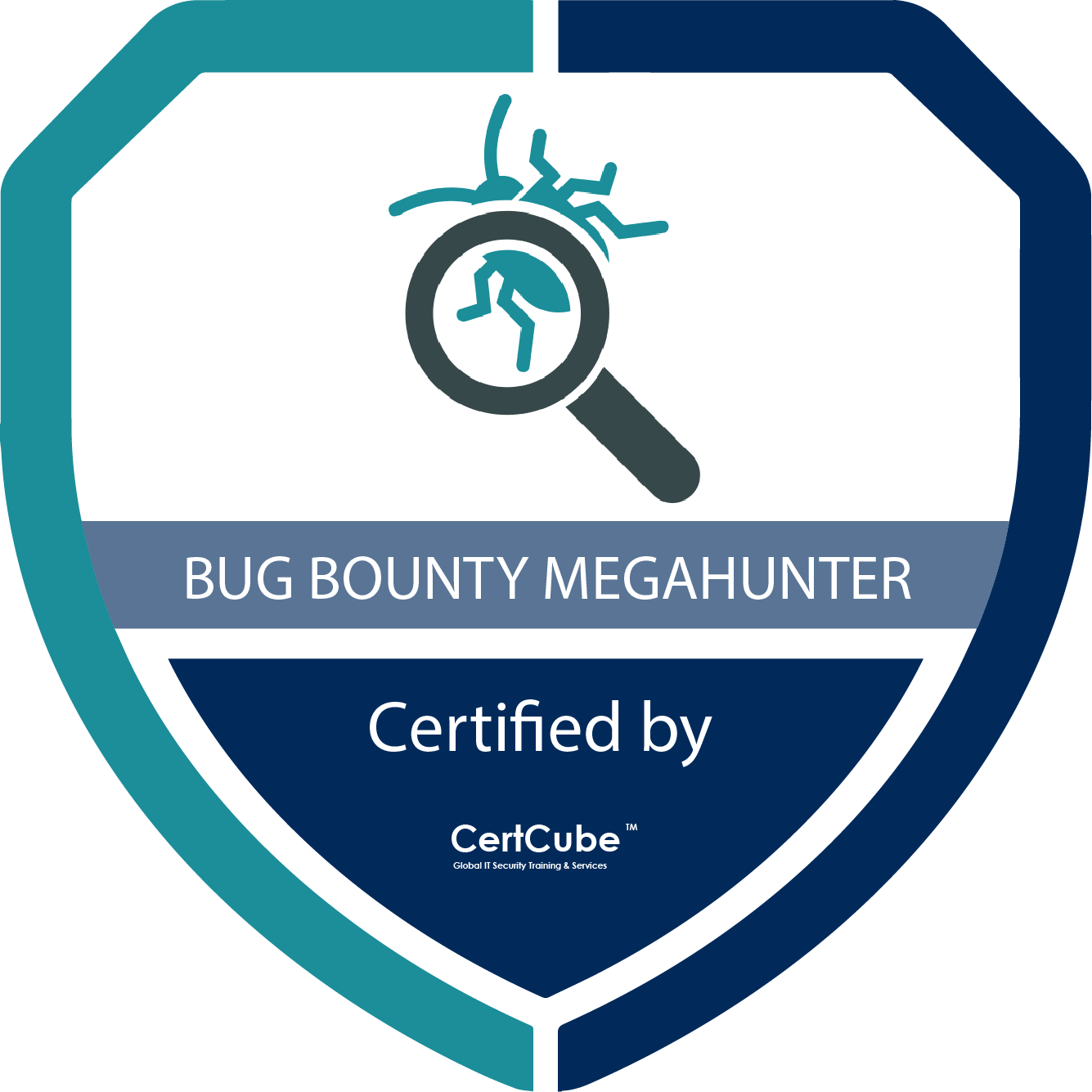bug bounty hunting extreme 2.0 1