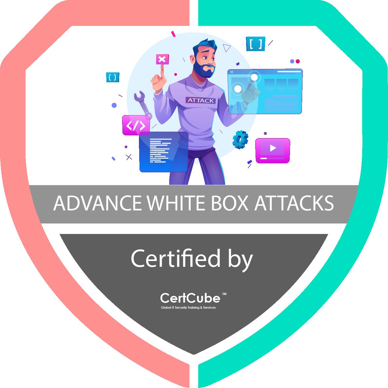 ADVANCE WHITE BOX ATTACKS-3