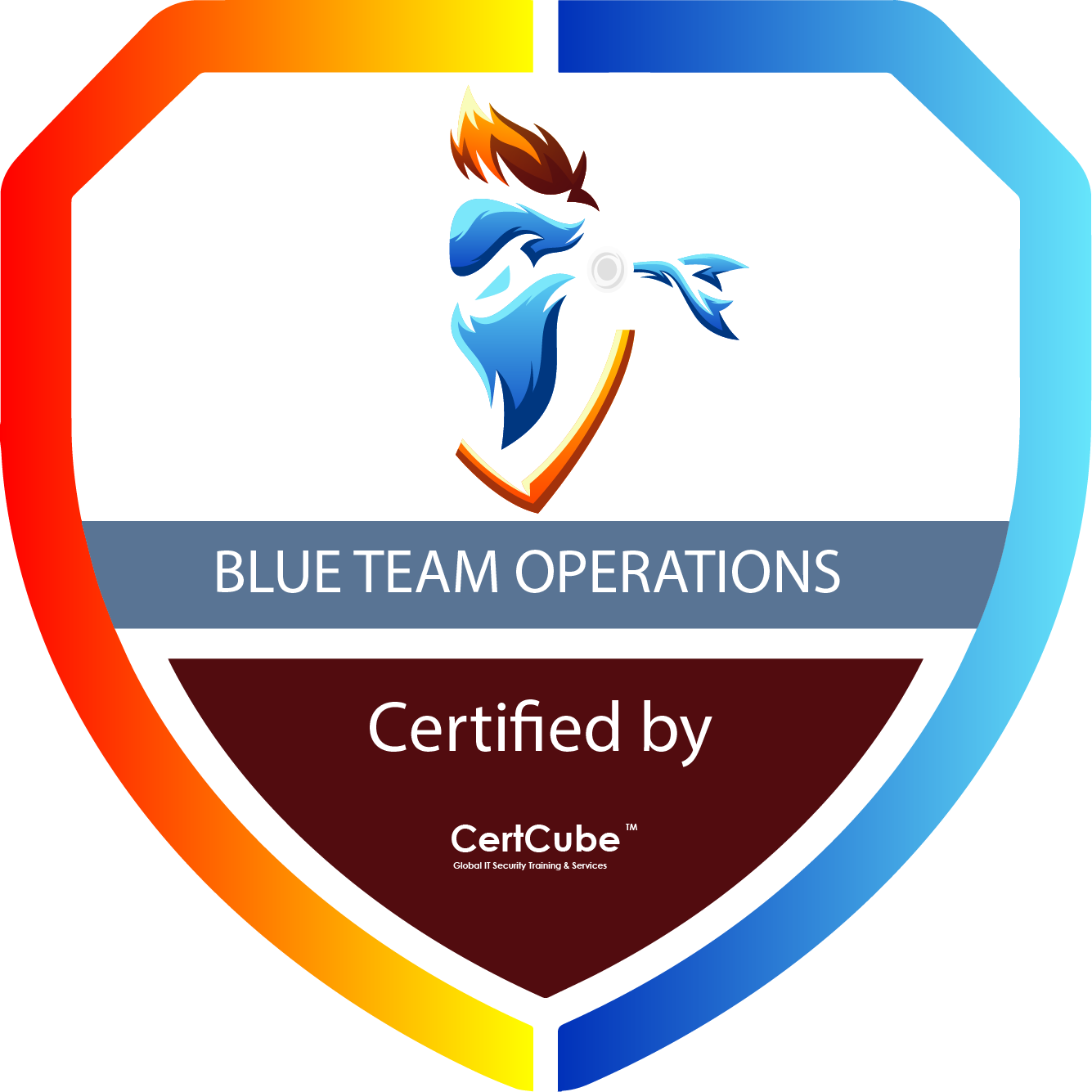 BLUE TEAM OPERATIONS